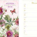 nieuwe-agenda-2016-nieuws